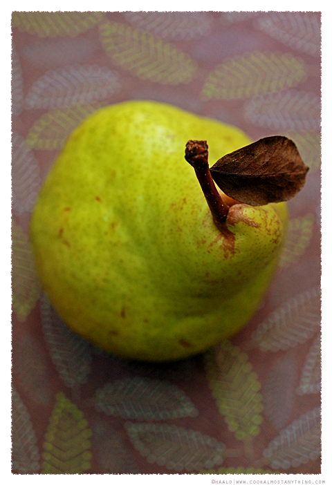 packham pear© by Haalo