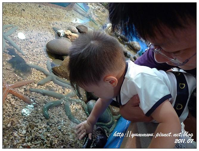110711小丑魚主題館 (44)
