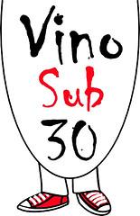 Logo VS30 2011 (alta)