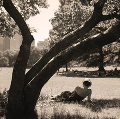Woman Reading, NYC, Central Park, Sheep Meadow (Sandra Wittmann) Tags: woman newyork analog blackwhite centralpark analogue filmscan sheepmeadow hasselblad500cm sekonicl758d cz2880mm epsonv500photo spurhrxiii acros10080