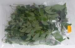 Zakje curry leaves