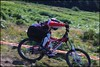"Llangollen National Champ '11 <a style=""margin-left:10px; font-size:0.8em;"" href=""http://www.flickr.com/photos/50017678@N06/5982063292/"" target=""_blank"">@flickr</a>"