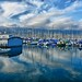 Harbor reflections (1)