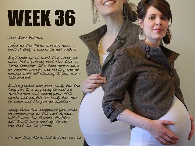 Week 36_Kirsty