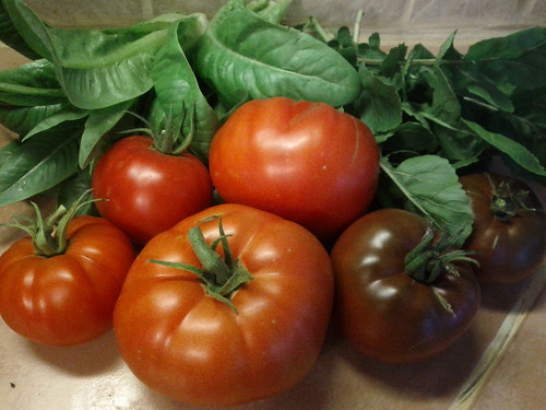 Solid First Tomato Harvest, End of July (with Summer Romaine and Arugula)