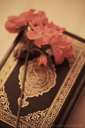 Ramadan Mubarak ♥