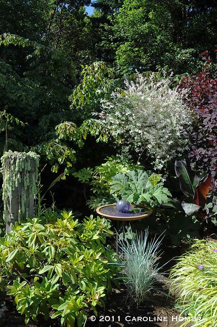 Foliage, bird bath with glass ball