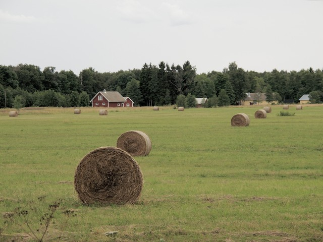 """Swedish"" style farm"
