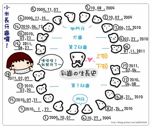 乳牙生長表-19_20.gif