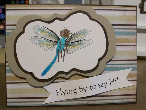 td dragonfly