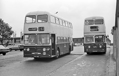 Hull & Coventry come to Dudley (geoff7918) Tags: 1975 dudley coventry daimler leyland fleetline kingstonuponhull atlantean wmpte 6344kh crw361c
