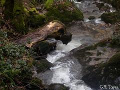 Ruta del rio loio ( 20-3-2010)