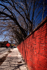 red brick, blue sky (@archphotographr) Tags: camera nyc newyorkcity blue shadow red sky newyork detail tree brick sign wall brooklyn lens us cityscape exterior traffic pavement contemporary perspective sunny pedestrian places sidewalk streetscape flushingavenue efs1022mmf3545usm canoneos50d hassanbagheri