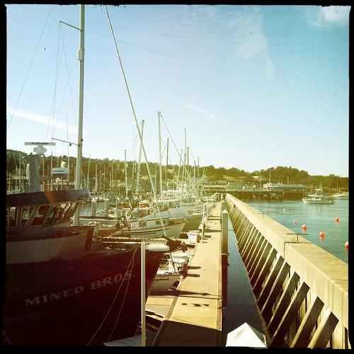 90 degrees...a gorgeous day at Monterey Fisherman's Wharf