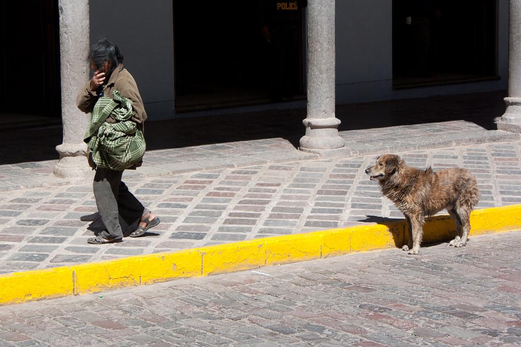 Homeless and his dog in Cusco, Peru