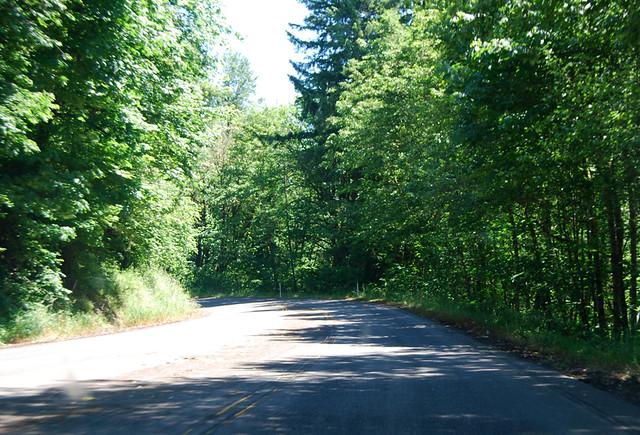 SR 122 in Ike Kinswa State Park