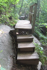 Trail bridges Photo