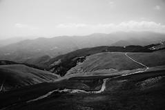 TUSCANY | MY PATH (Alessio Nanni) Tags: bw mountain blackwhite path wideangle tuscany nophotoshop sentiero abetone lagoscaffaiolo straightfromthecamera doganaccia nikond300s