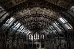Beauty (not) in Decay (Romany WG) Tags: london history museum architecture natural victorian stunning