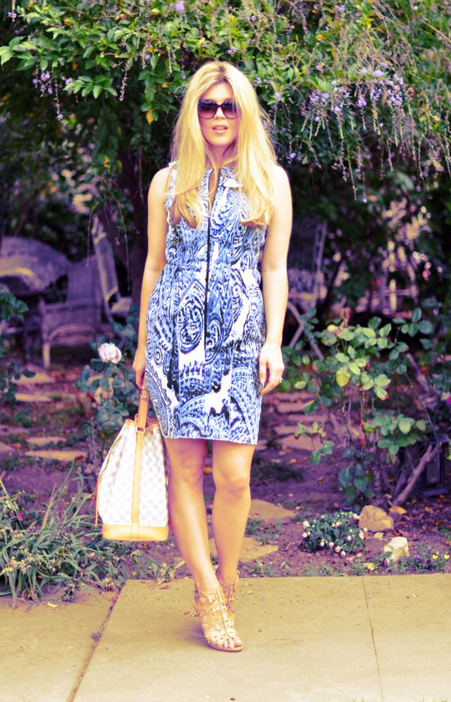 Blue and white China Dress  + Eva Franco