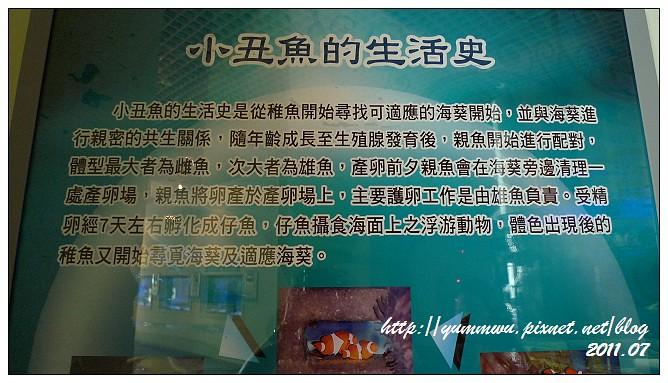 110711小丑魚主題館 (19)