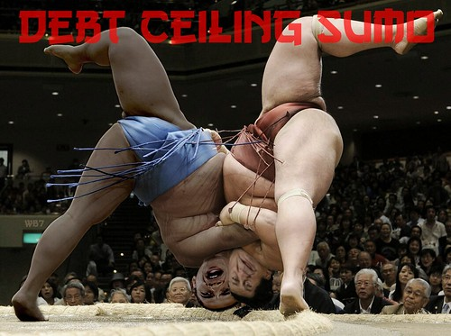 DEBT CEILING SUMO by Colonel Flick