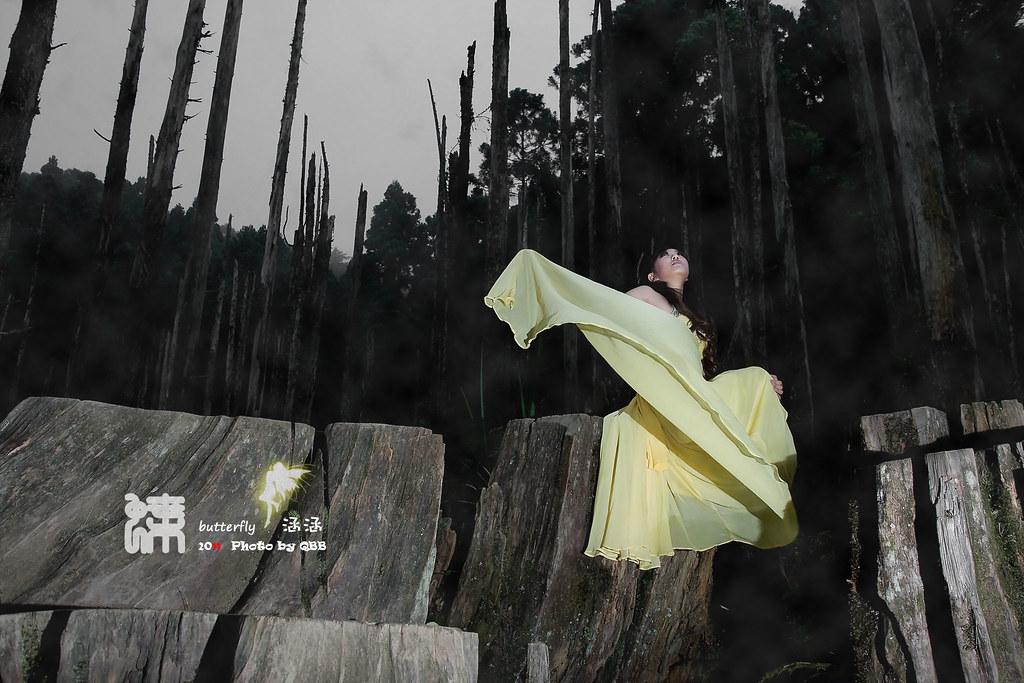 ~*忘憂花蝴蝶 涵涵* ~