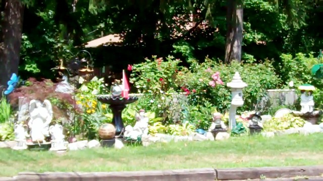 Lawn Ornaments - 1 August 2011 -  NiagaraWatch.com