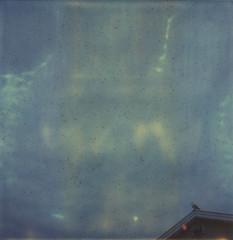 (abdukted1456) Tags: roof sea sky bird rooftop me polaroid sx70 seagull gull maine peak overcast stormy minimal integral scarborough expired tz speckle timezero expiredfilm landcamera instantfilm pinepoint seagullsstraightupposeformewhentheyseethesx70