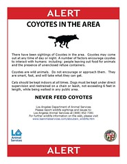coyote_alert_Page_1
