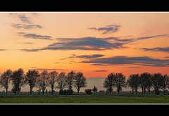 lazy country evening (Wim Koopman) Tags: trees sunset sky orange holland green netherlands grass clouds rural photography evening countryside photo nikon afternoon country stock nederland meadow stockphoto stockphotography d90 goudriaan wpk