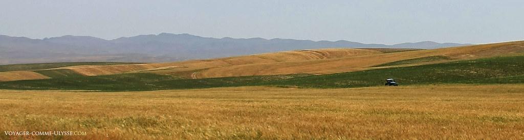 Un tracteur, au loin, au milieu d'un champ agricole