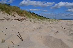Beach (Lo766) Tags: sea summer sky cloud beach nature grass clouds sand nikon heaven skies sweden sunny beaches