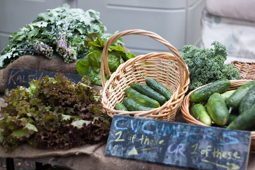 Kale, Lettuce, and Cucumbers by timsackton, on Flickr