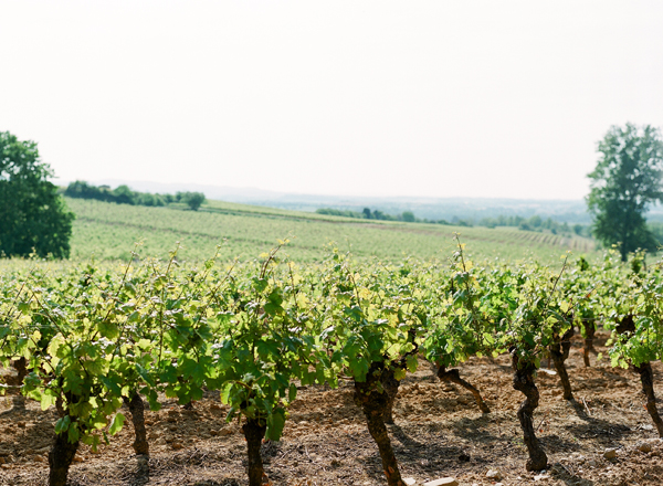 2011_0510_Carcassonneblog04.jpg