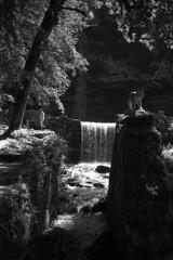 Le lynx et l'elfe au bord de l'eau (Tonton Dave) Tags: france nature water monochrome landscape waterfall eau jura paysage cascade lynx cascadesduhérisson