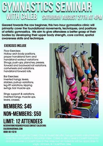 Gymnastics Seminar