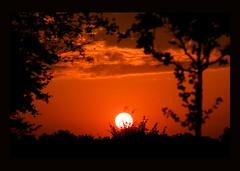 Don't let the sun go down... (Fleur_008) Tags: sunset red rot germany sonnenuntergang balticsea ostsee norddeutschland sonyalpha350 mygearandme musictomyeyeslevel1