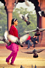 Yeh Delhi hai, mere yaar. Buss ishq mohabbat pyaar! (kholkute) Tags: old india playing girl birds fly child delhi innocent mosque prasad masjid jama piegions kholkute prasadkholkute
