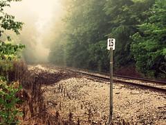 Railroad (Sarah Elizabeth Altendorf) Tags: county railroad morning mist fog train kentucky tracks pisgah woodford