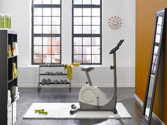Home Gym (Behr Paint) Tags: orange green amber athletic paint interior gray walls lime workout invigorating functional versatile personalspace behr homegym modernstyle premiumplus orangeaccentwall exercisespace brightaccents