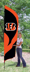 Cincinnati Bengals Tall Feather Flag