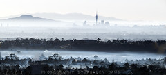 Foggy morning Auckland (Ashley Daws) Tags: new city morning trees sky panorama mist tower fog landscape cityscape foggy auckland zealand nz layers kiwi scape tones