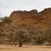 Baobas e vila de Ideli ao fundo