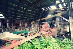 [ Mr. Olson's barn ] (DaizyB) Tags: old light summer sun abandoned barn rural decay roadtrip roadside beams machinerie