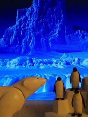 DSC00504 (MASaenzCorrea) Tags: animal penguin polarbear artic playmobil pingino rtico osopolar