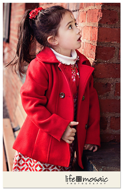 Red Coat Train Vertical Portrait WM FB