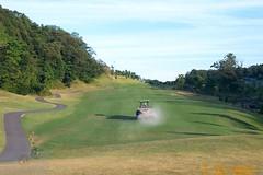 habu cc eighth hole 22 July 2001