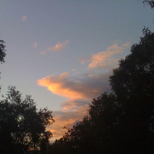 Sunset (#19)