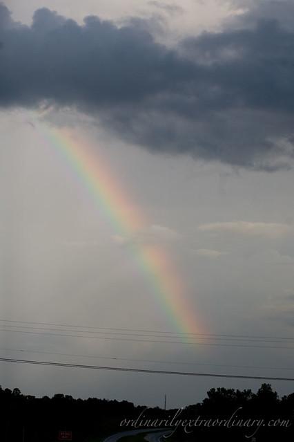 Rainbow_072311_0009web
